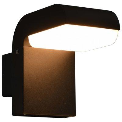 LED-buitenwandlamp 9 W ovaal zwart
