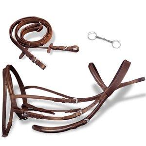 Hoofdstel leer met gecombineerde neusriem, teugels en bit bruin pony